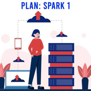 Spark 1 - Managed WordPress Hosting