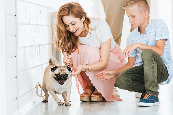Benefits of Pet Adoption