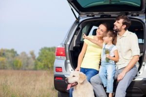 planning to travel with your dog in the car, groom your pup before hitting the road | Family Life Tips